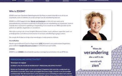Website laten maken in Rosmalen, Wordpress Onderhoud